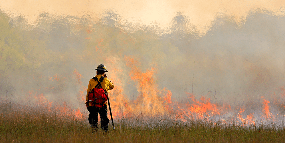 Wildfire Firefighter Safety